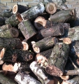 Drewno kominkowe.
